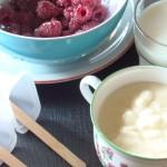 gelato – ghiacciolo alla vaniglia e lamponi (senza gelatiera) raspberries and vanilla cream popsicle