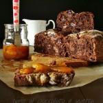 Pane al cioccolato e uvetta – chocolate raisin bread