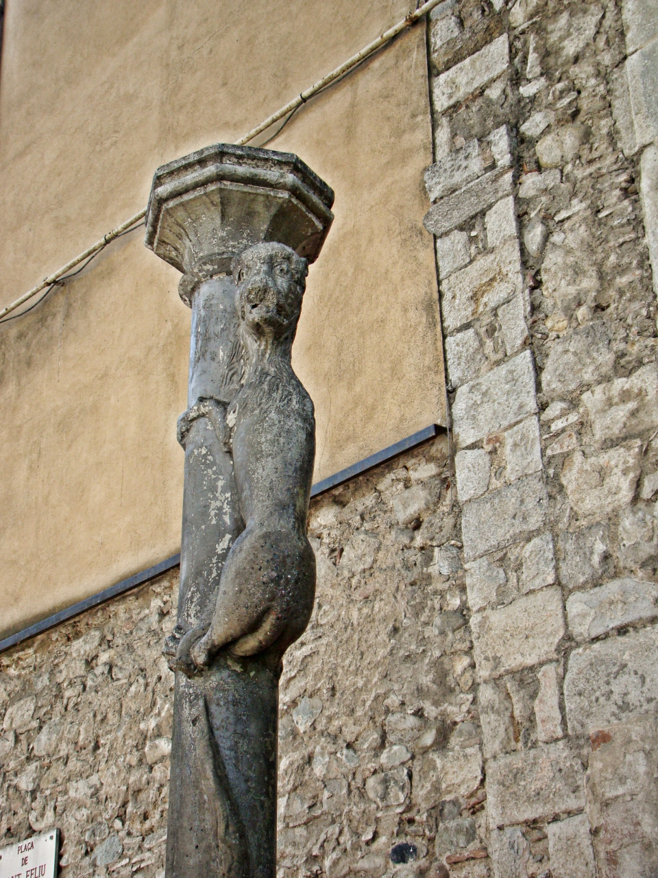 la leona a Girona